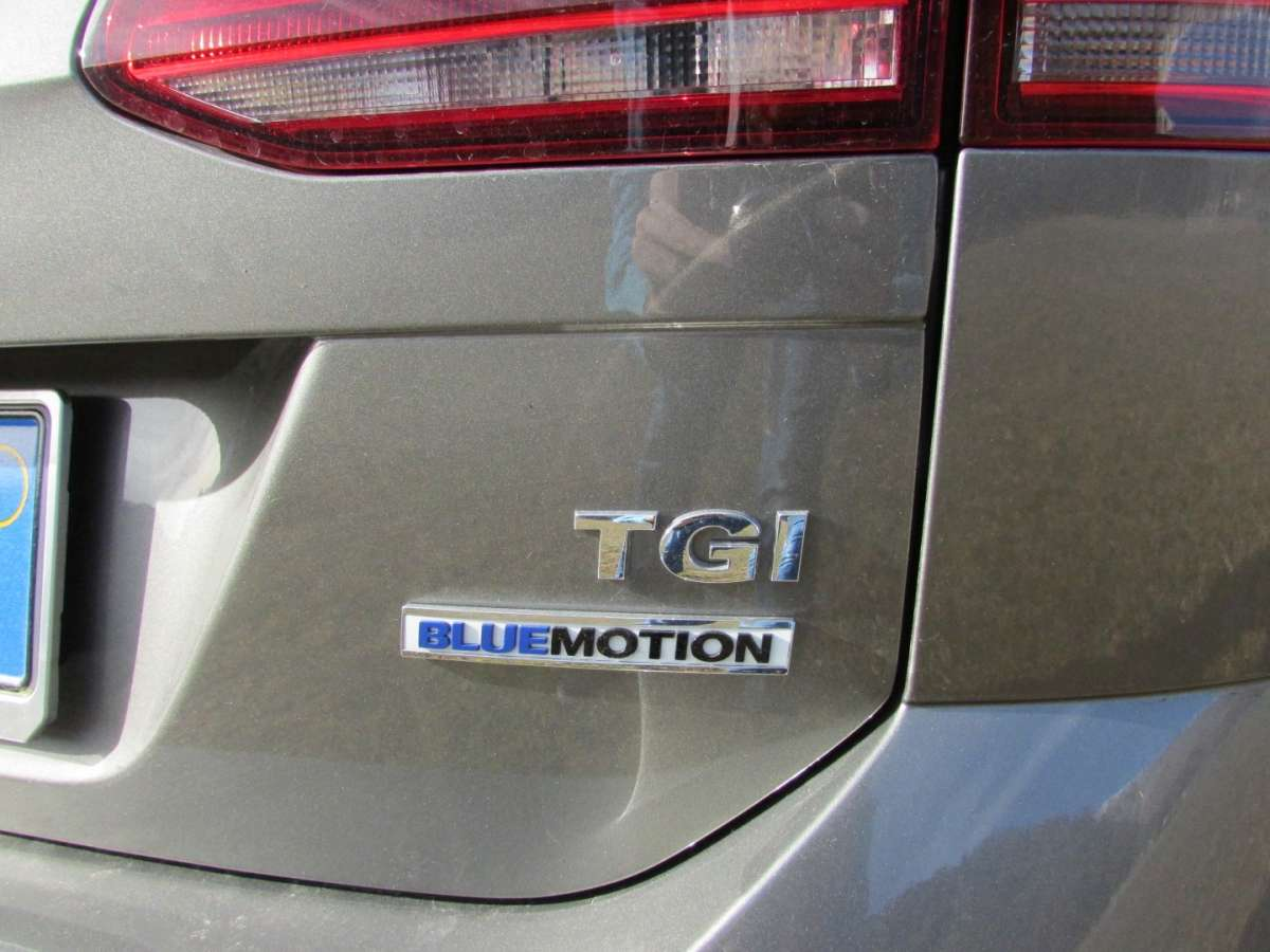 Logo TGI BlueMotion