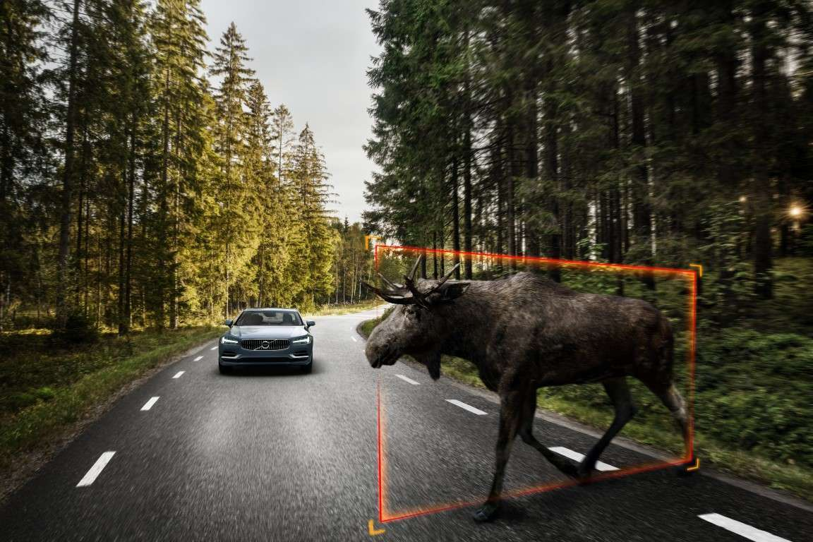 Volvo S90 Excellence, Large Animal Detection