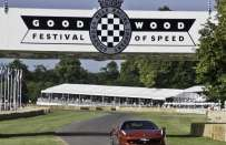 Goodwood Festival of Speed 2015, le auto