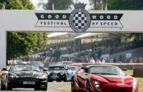 Goodwood Festival of Speed 2017: auto esposte